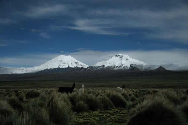 Photo Bolivie Altiplano - Parinacota pomerape