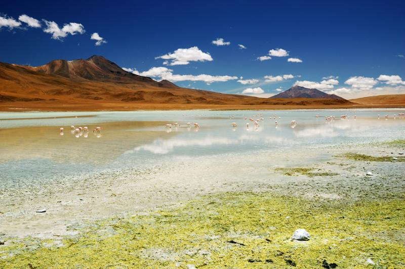 Bolivie Altiplano - Sud Lipez